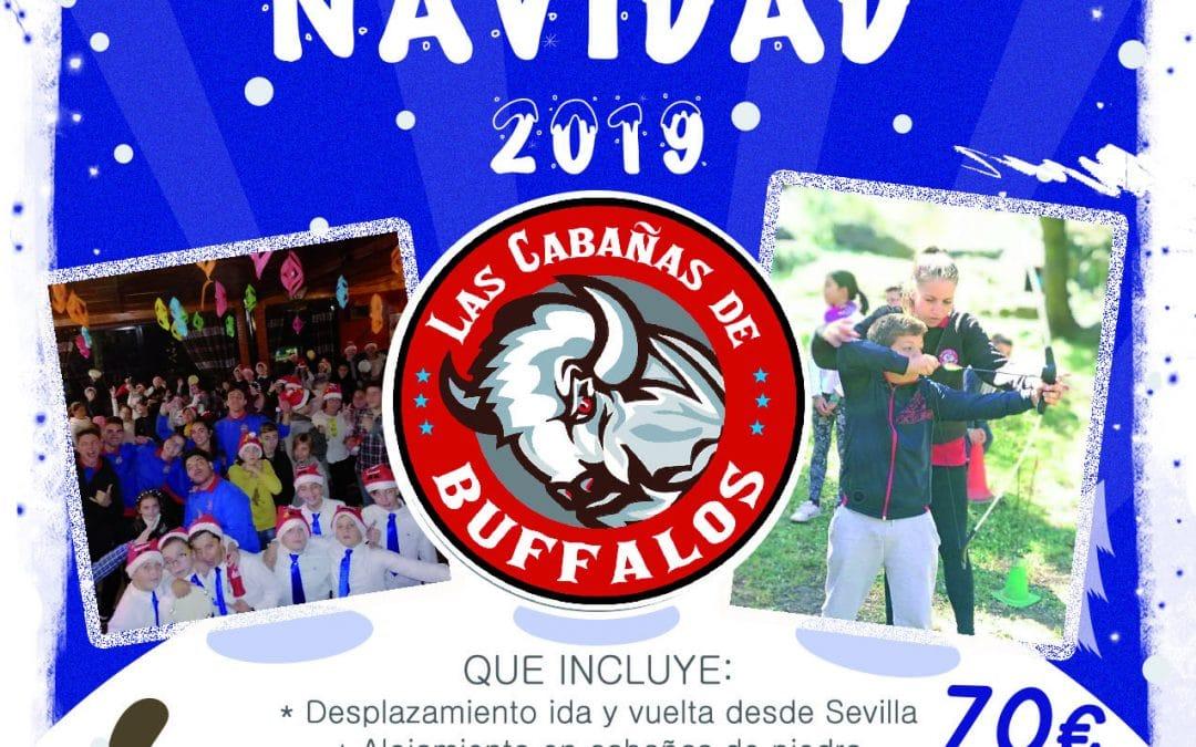 Campamento para navidad 2019